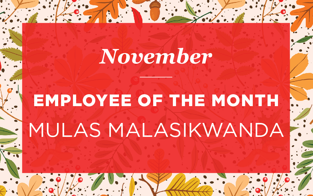 Mulas Malasikwanda